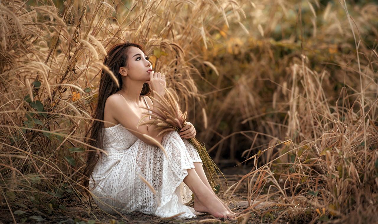 Desktop Hintergrundbilder Braune Haare junge Frauen Asiaten Gras Hand Sitzend Kleid Braunhaarige Mädchens junge frau Asiatische asiatisches sitzt sitzen