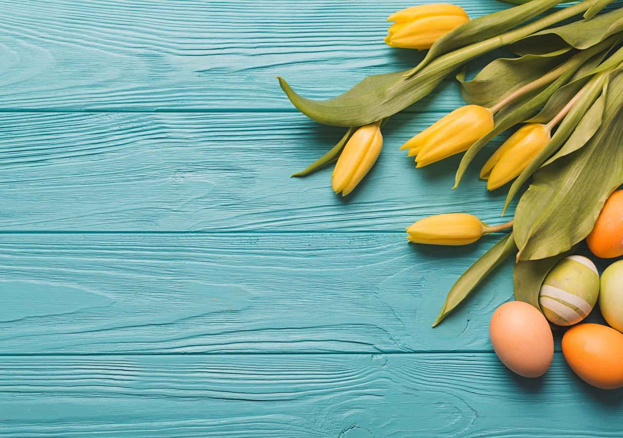 Wallpaper Easter Eggs Tulips Flowers boards egg tulip flower Wood planks