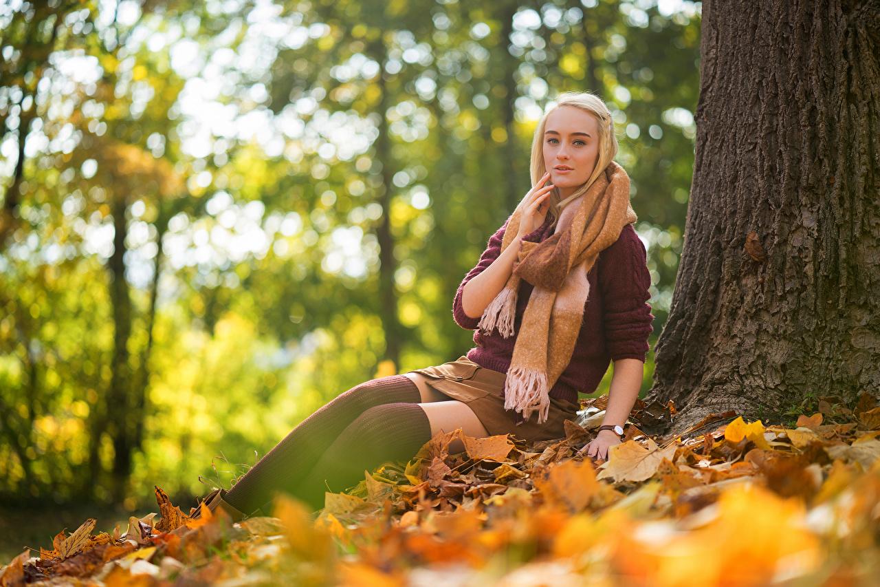 Image Skirt Foliage Blonde girl Scarf Sarah Autumn female Nature Sweater Sitting Glance Leaf Girls young woman sit Staring