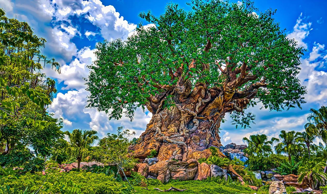 Fotos Anaheim Kalifornien Disneyland Vereinigte Staaten HDRI Natur Park Bäume Design USA HDR