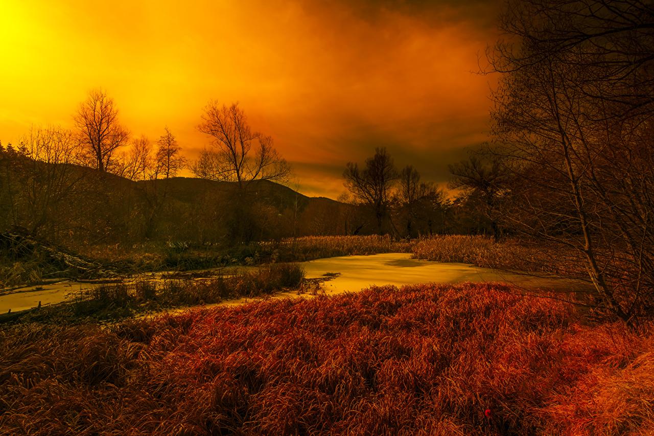 Fotos Frankreich Thorenc Natur Herbst Sumpf Himmel Gras