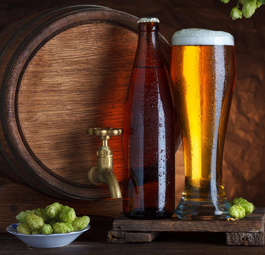 Photos Beer Humulus Barrel Highball glass Food Foam Bottle Hops cask bottles