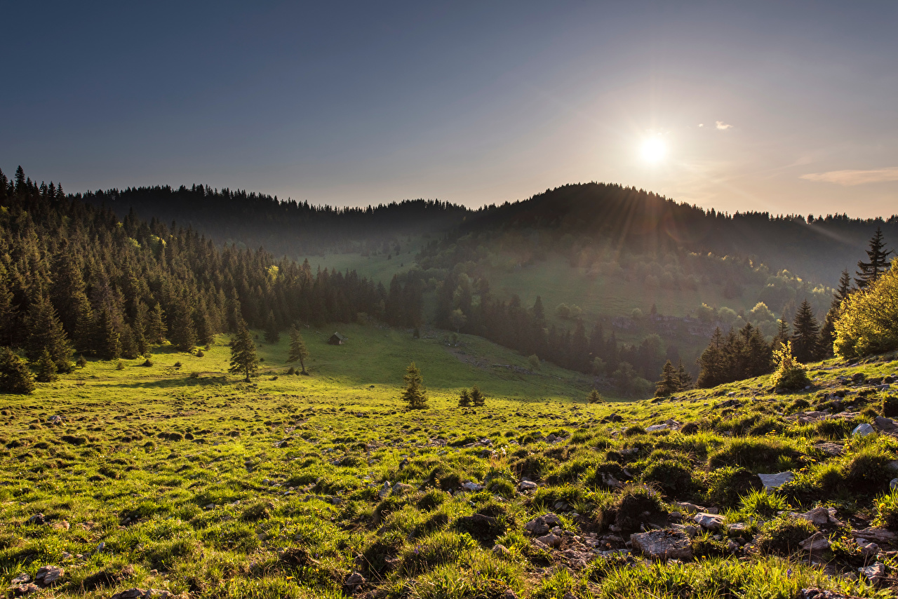 Fotos von Slowakei Velka Fatra Natur Sonne Gebirge Grünland Bäume Berg