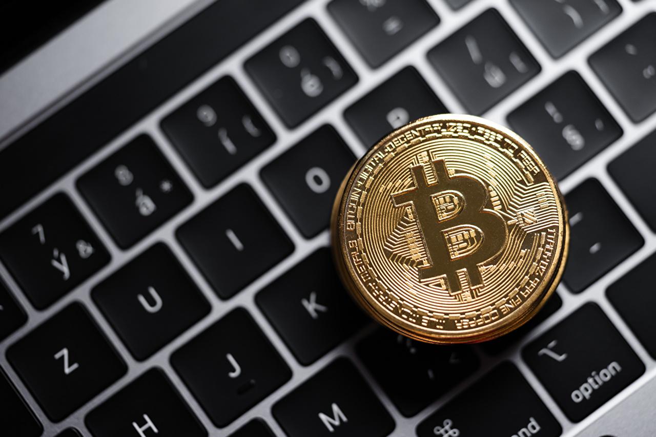 Bilder von Tastatur Münze Bitcoin Gold Farbe Geld hautnah Nahaufnahme Großansicht