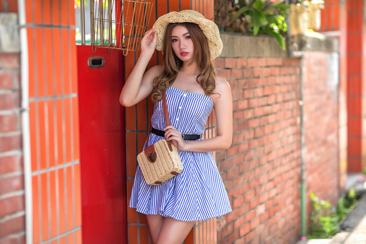 Foto Bokeh poserar Hatt Unga kvinnor Asiater Handväska ser Klänning suddig bakgrund Pose ung kvinna asiatisk Blick