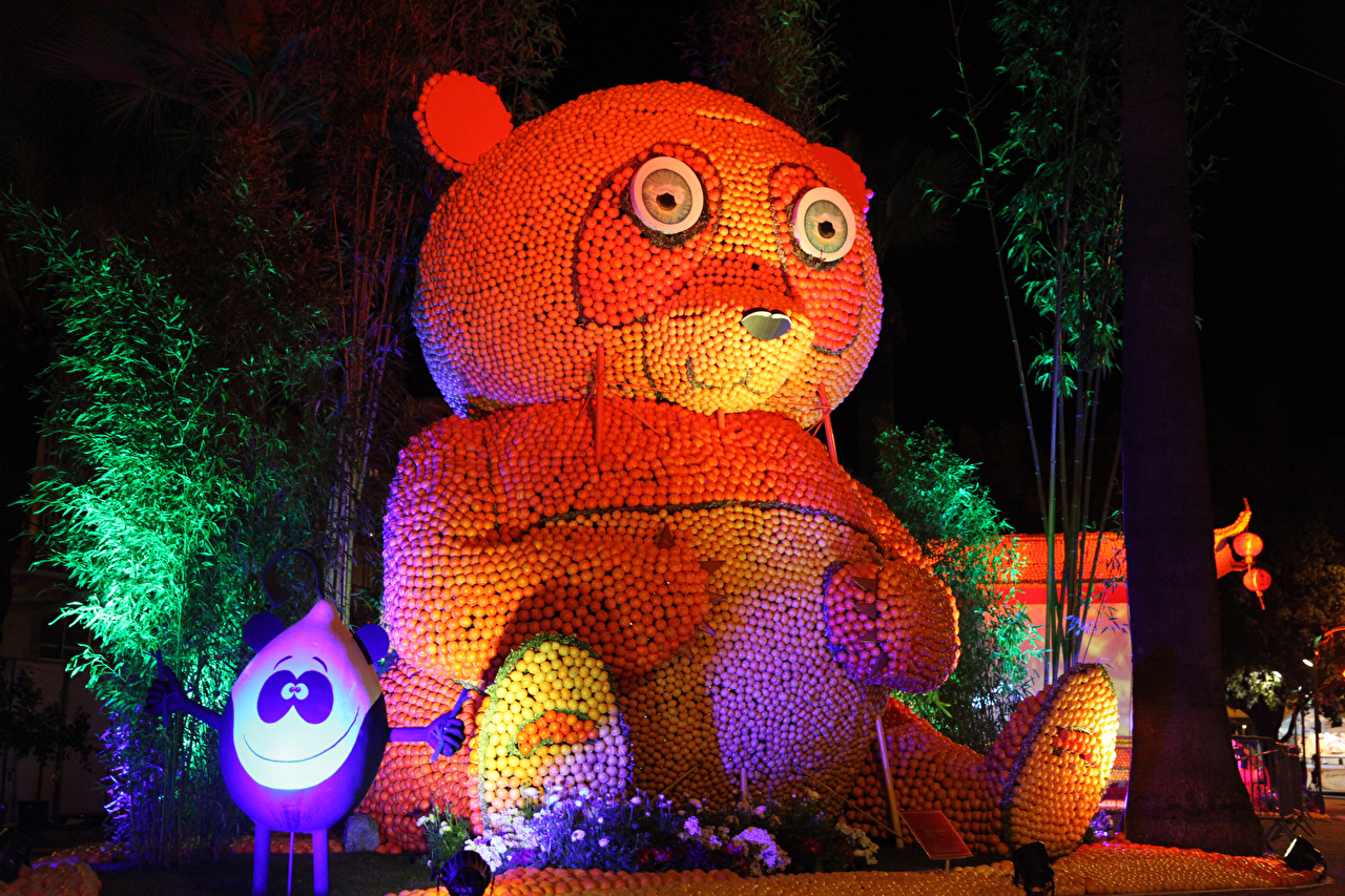 Pictures France Lemon Festival Menton Nature Parks Teddy bear Night Citrus Design night time