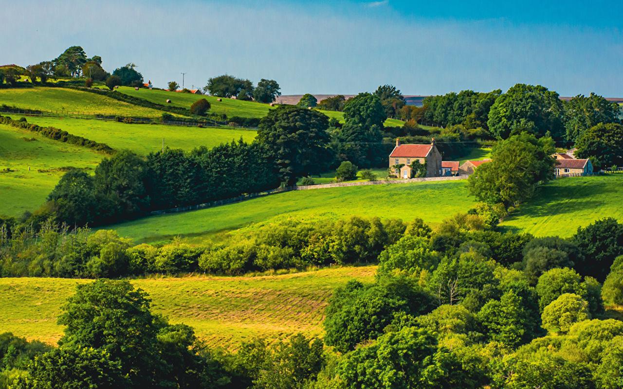 Bilder England North York Moors National Park Natur Parks Landschaftsfotografie Bäume Gebäude Haus