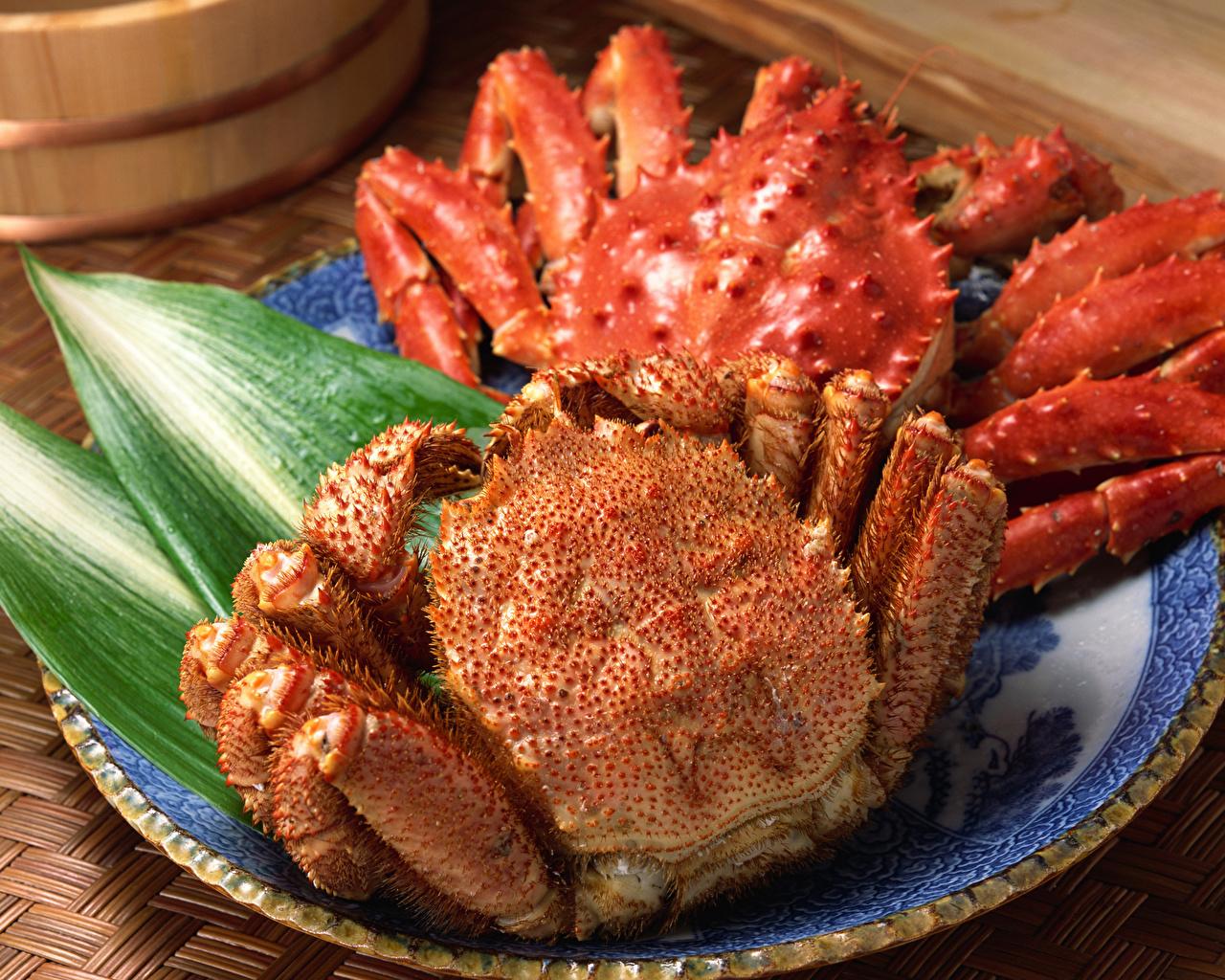 Foto Krabben das Essen Nahaufnahme Meeresfrüchte Lebensmittel hautnah Großansicht