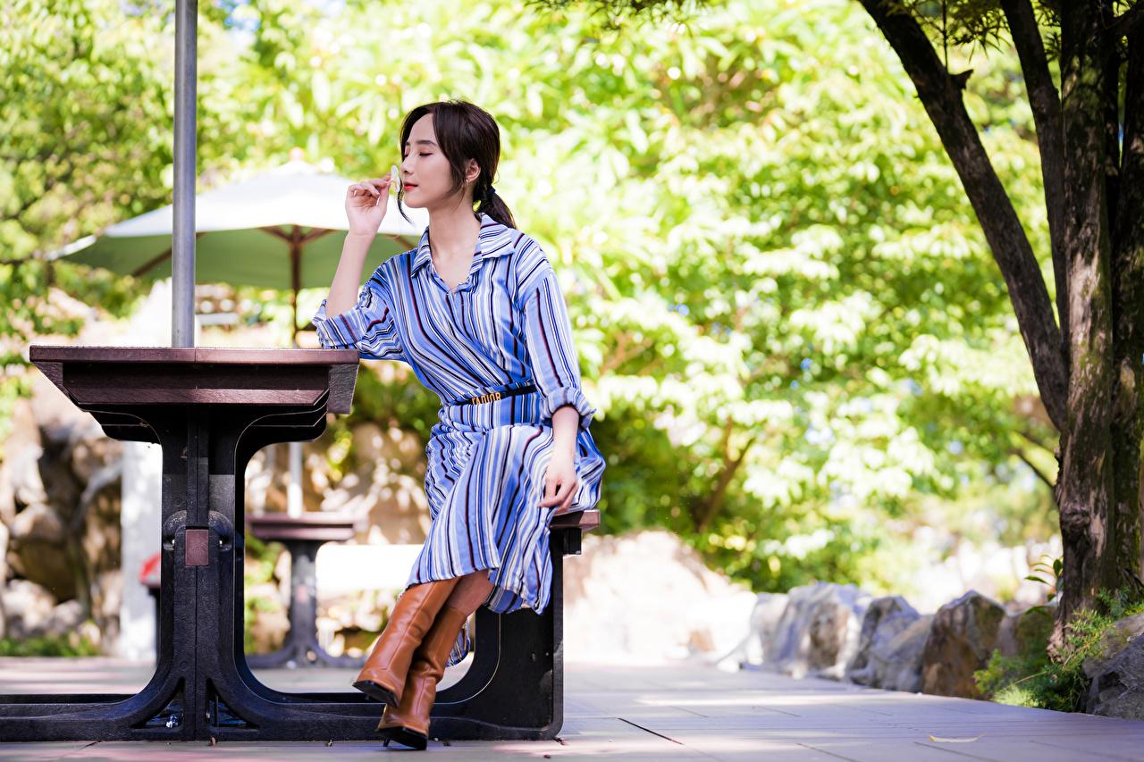 Foto unscharfer Hintergrund junge frau asiatisches sitzen Kleid Bokeh Mädchens junge Frauen Asiaten Asiatische sitzt Sitzend