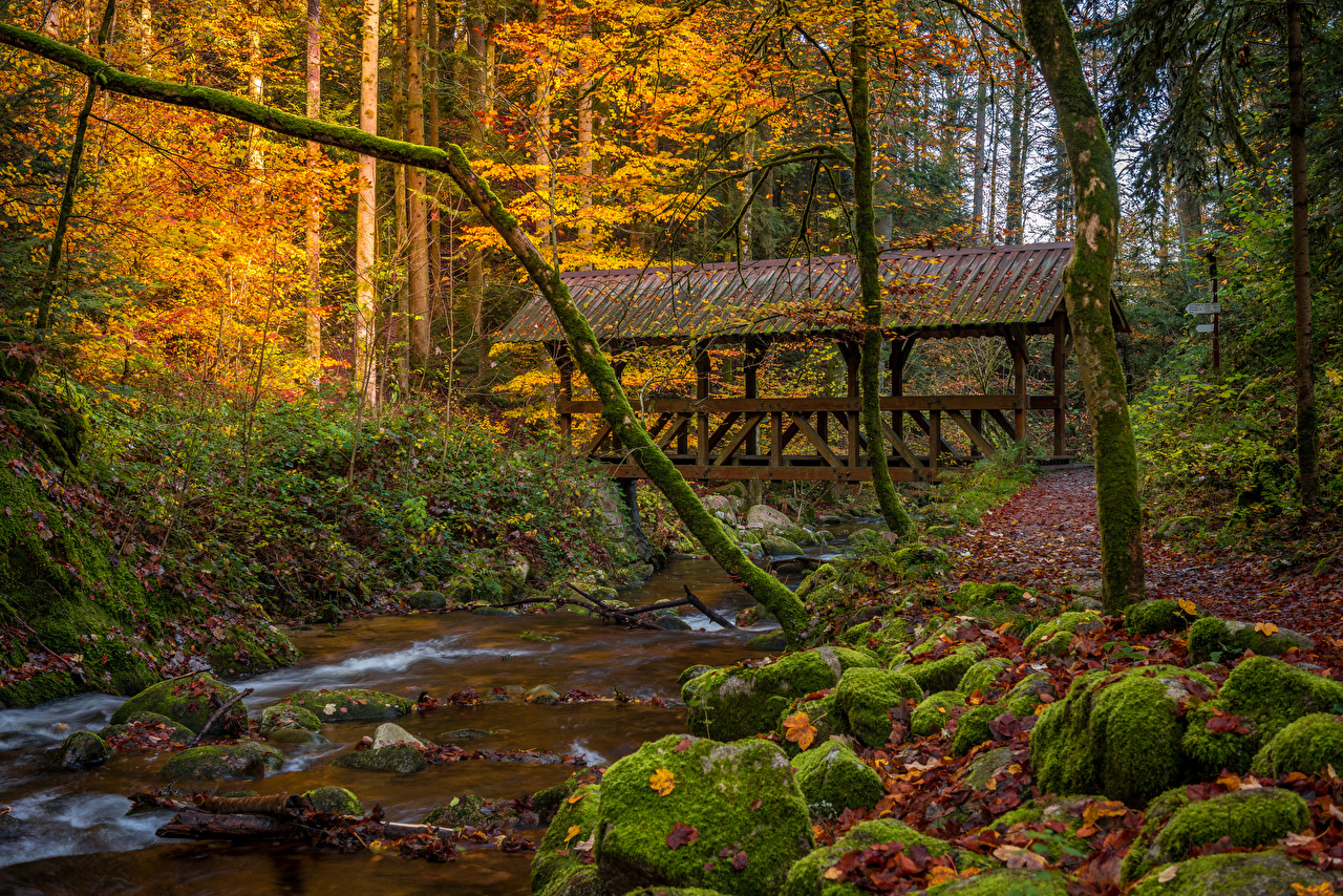 Desktop Wallpapers Germany Baden-Baden Creek Autumn bridge Nature forest Moss stone brook Stream Creeks Bridges Streams Forests Stones