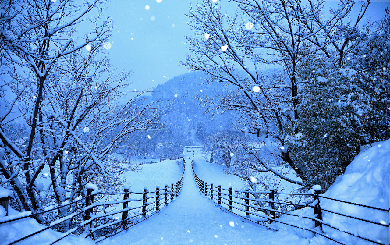 Bilder Japan Shirakawa-go and Gokayama Natur Winter Wege Zaun Schnee Straße