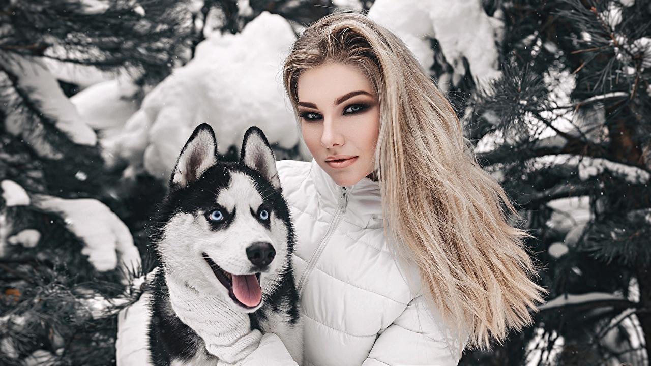 Fotos Siberian Husky Blond Mädchen Make Up Anton Kharisov, Anastasia Fogler schönes Haar junge frau ein Tier Blondine Schminke Schön schöne hübsch schöner hübsche hübscher Mädchens junge Frauen Tiere