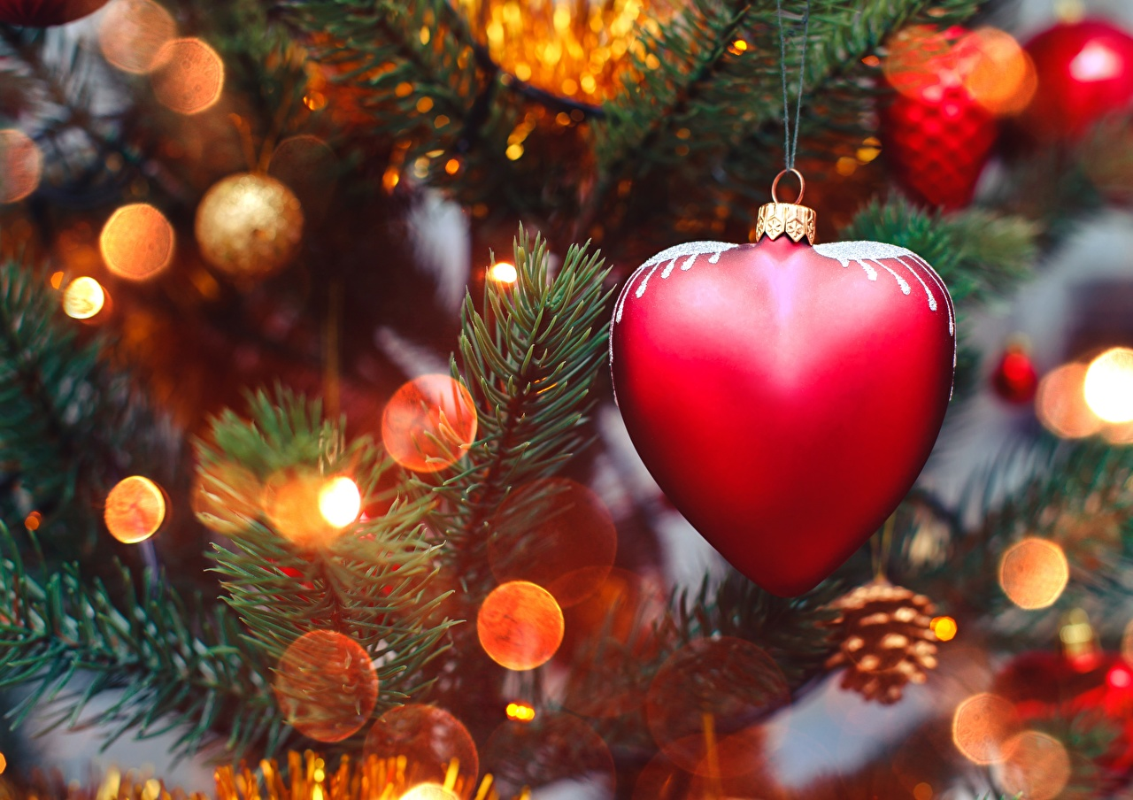 Images Christmas Heart Branches Closeup New year