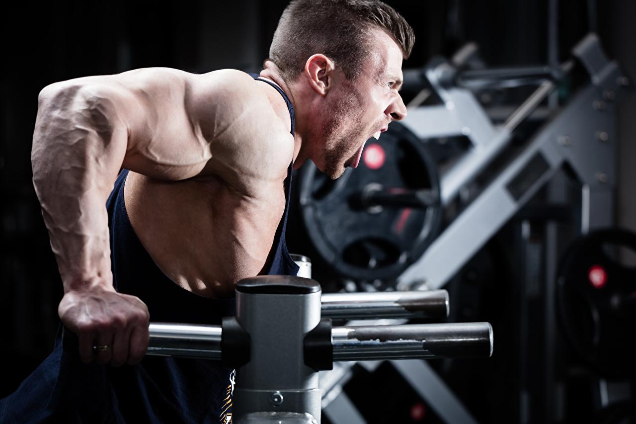 Photo Men Muscle Workout Screaming Sport Bodybuilding