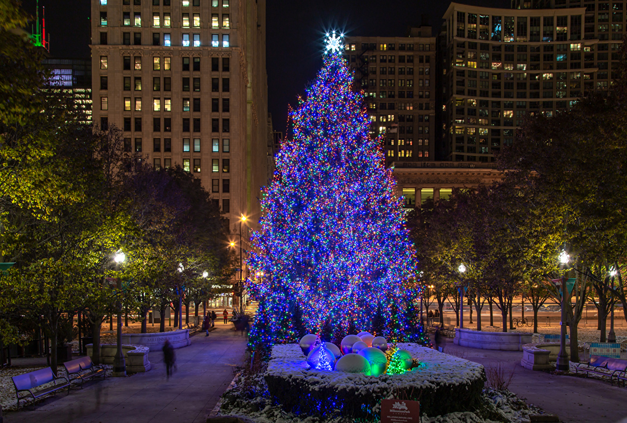 Photos Chicago city USA Christmas Christmas tree Evening Street lights Houses Cities New year New Year tree Building