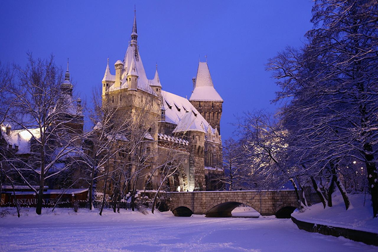 壁紙 城 ハンガリー 冬 ブダペスト Vajdahunyad 雪 都市