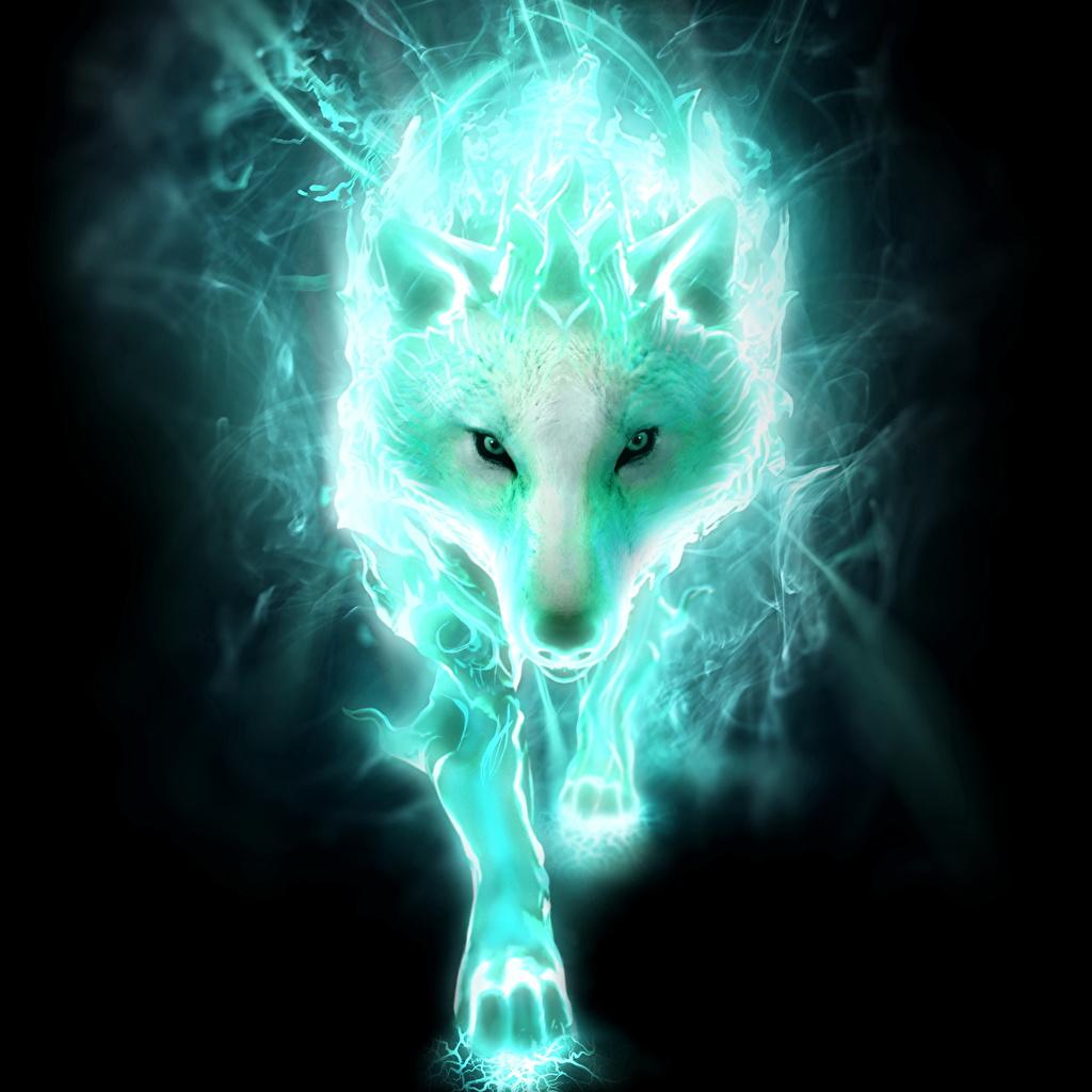 Fotos Castlevania Lords Of Shadow Wölfe Spiele Magische Tiere