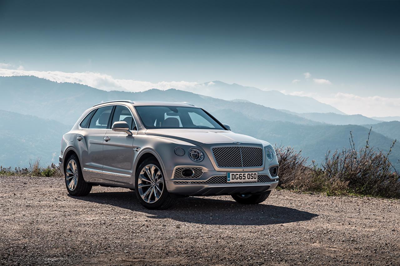 Image Bentley 2015 Bentayga Grey Cars Metallic gray auto automobile