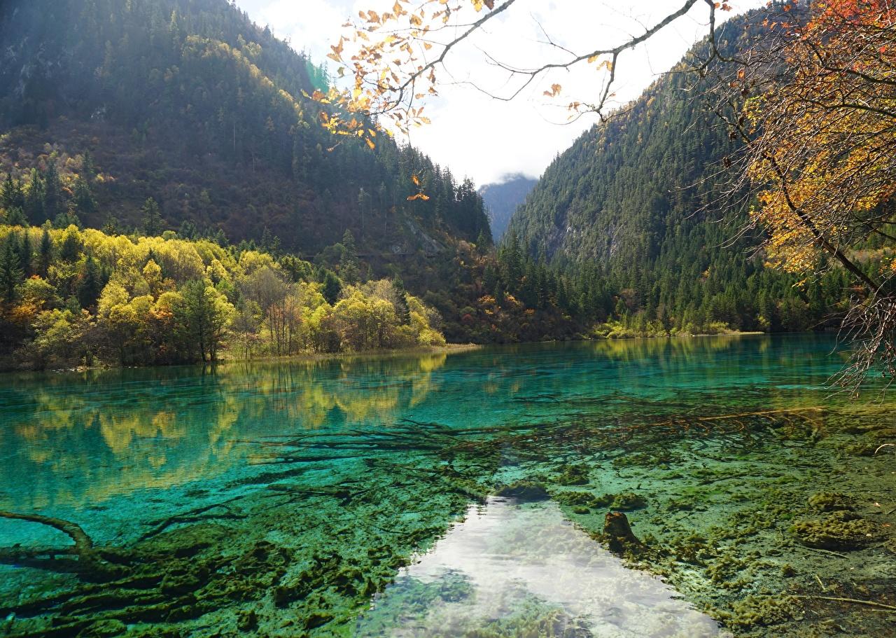Photos Jiuzhaigou park China Sichuan Nature Autumn mountain Lake Parks forest Mountains park Forests