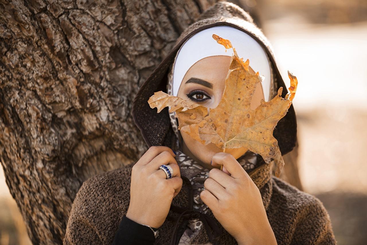 Bilder von Blattwerk Bokeh Mädchens Hand Blick Blatt unscharfer Hintergrund junge frau junge Frauen Starren