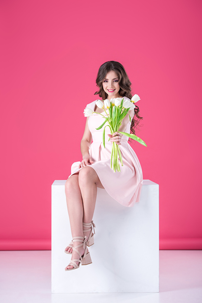 Image Brown haired Smile Tulips female sit gown Colored background  for Mobile phone tulip Girls young woman Sitting frock Dress