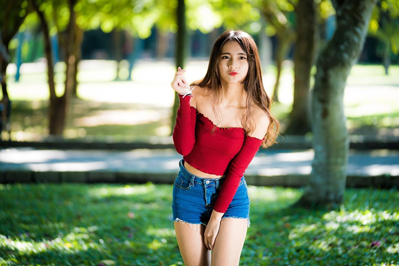 Immagini Ragazza capelli castani sfondo sfocato Ragazze asiatico Braccia Pantaloncini Colpo d'occhio Bokeh ragazza giovane donna giovani donne Asiatici Le mani Sguardo