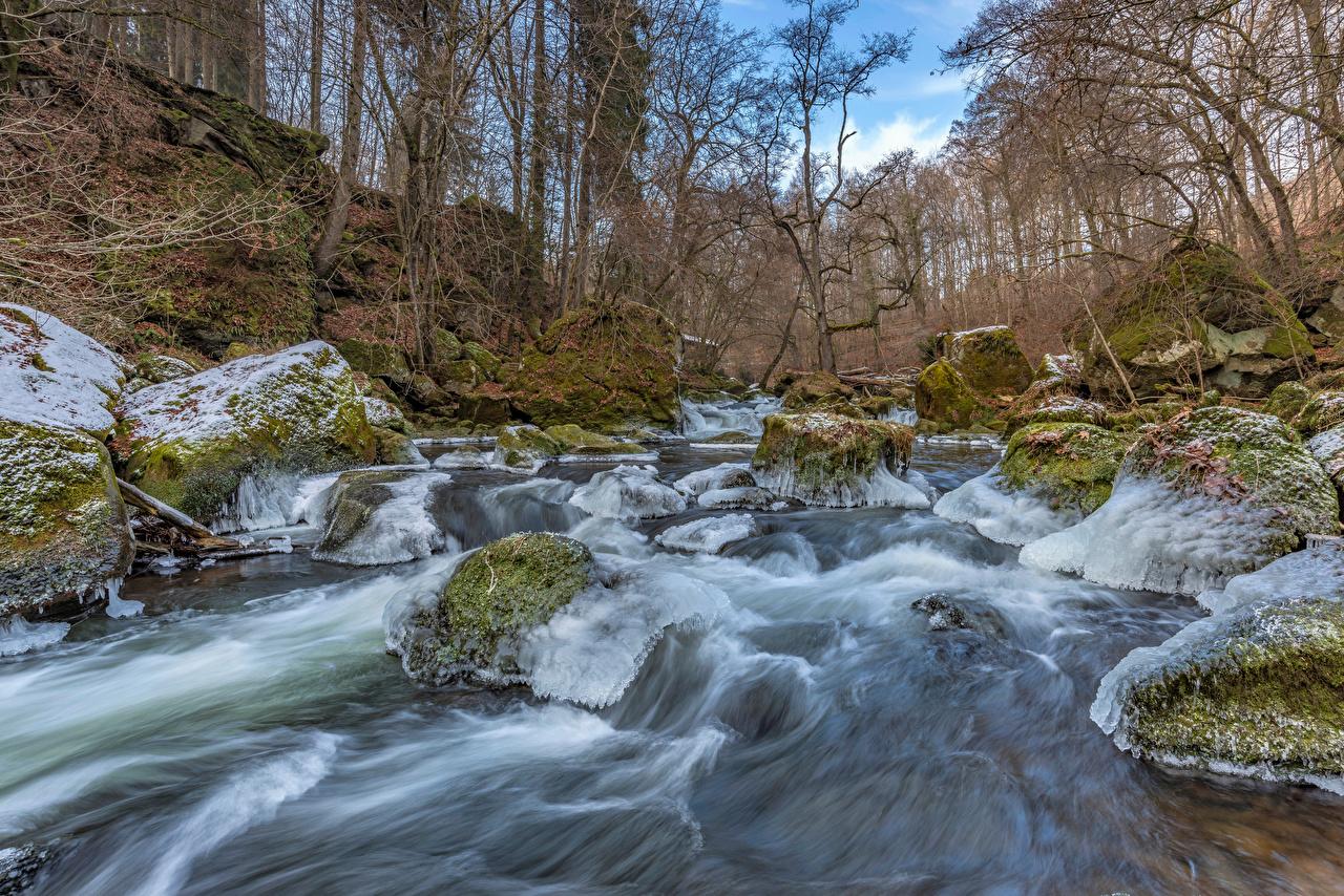 Bilder Deutschland South-Eifel Eis Natur Wälder Fluss Steine Laubmoose Bäume Wald Stein Flusse