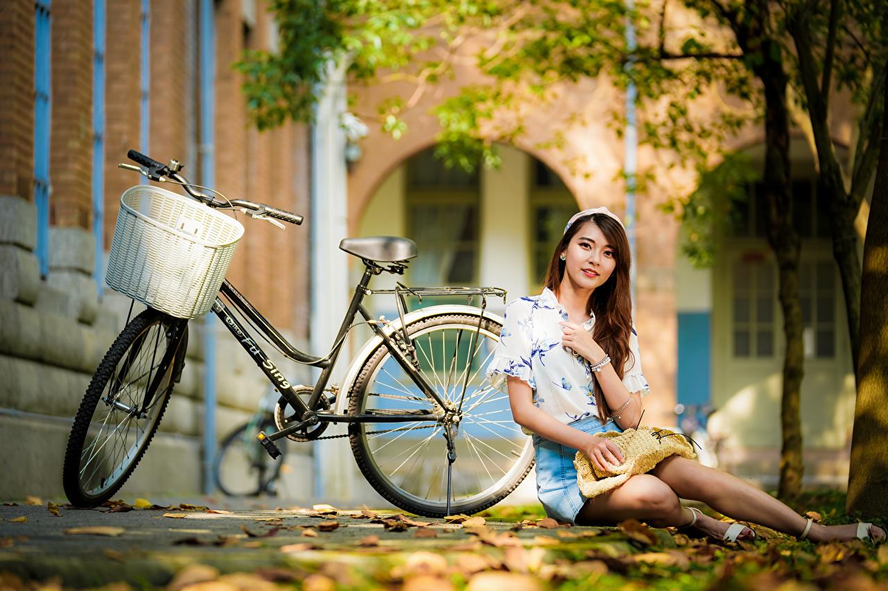 Fotos von Rock Blatt Bluse fahrräder junge frau Asiaten sitzen Blick Blattwerk Fahrrad Mädchens junge Frauen Asiatische asiatisches sitzt Sitzend Starren