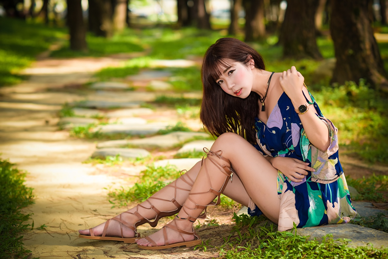 Photo Brown haired Bokeh female Legs Asian Hands Sitting Dress blurred background Girls young woman Asiatic sit gown frock