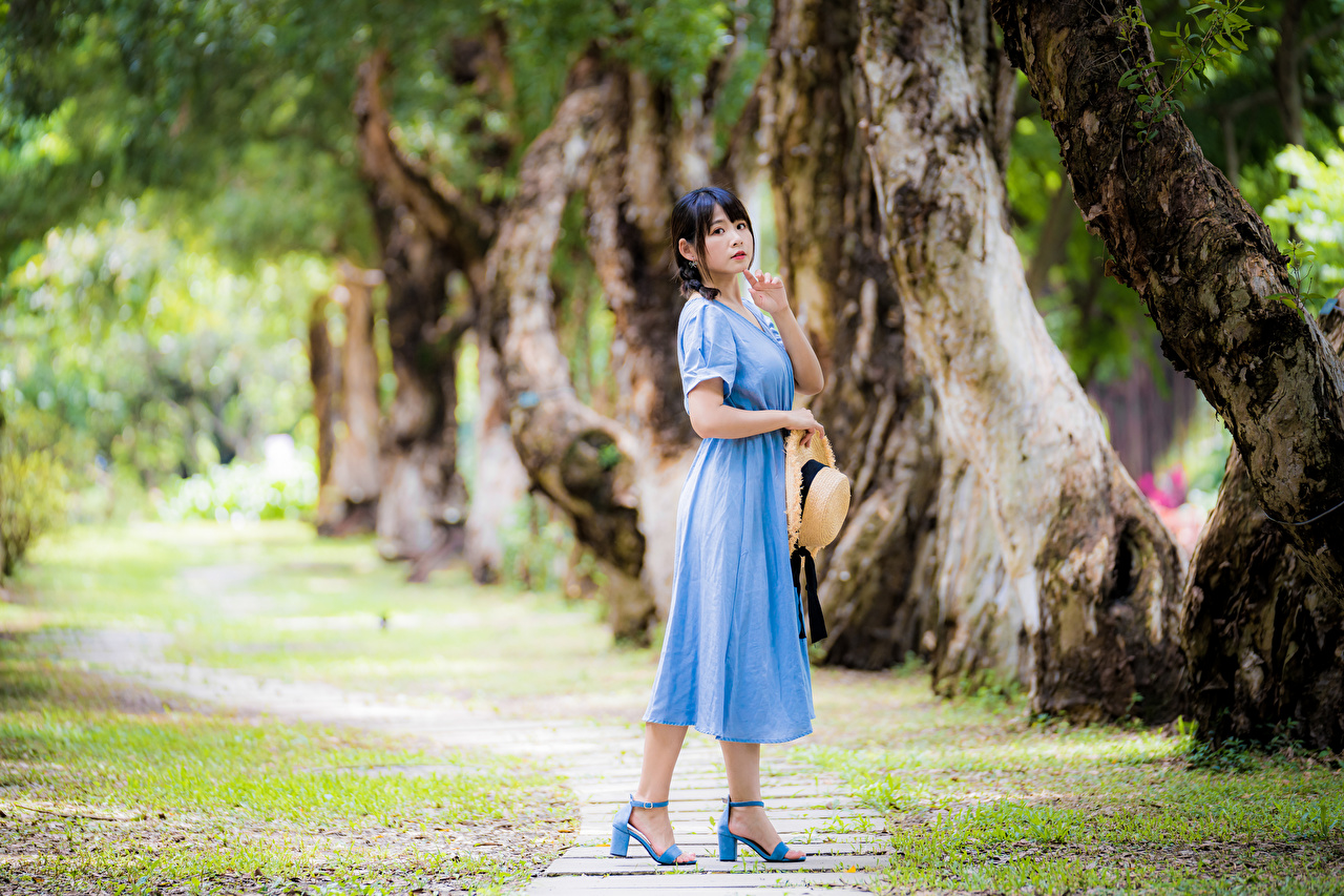 Photo Bokeh Hat Girls Asiatic Staring Dress blurred background female young woman Asian Glance gown frock