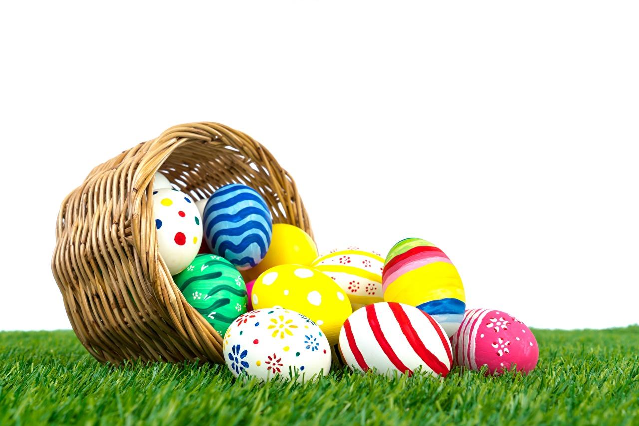 Image Easter Eggs Grass egg