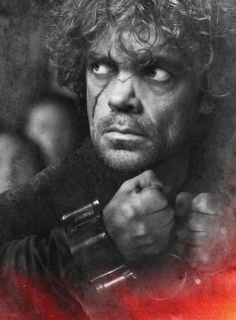 Fotos von Game of Thrones Peter Dinklage Mann Tyrion Lannister Gesicht Film Starren Prominente Großansicht  für Handy Blick hautnah Nahaufnahme