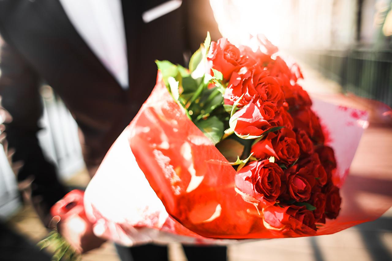 Desktop Hintergrundbilder Sträuße Rot Rose Blumen hautnah Blumensträuße Rosen Blüte Nahaufnahme Großansicht