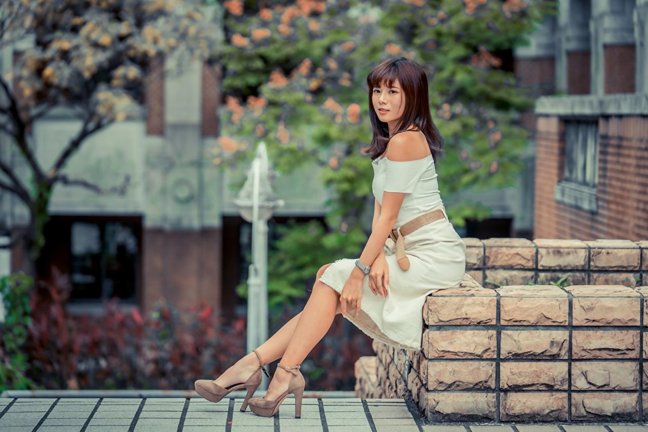 Fotos von Braunhaarige junge Frauen Bein Asiaten sitzt Kleid High Heels Braune Haare Mädchens junge frau Asiatische asiatisches sitzen Sitzend Stöckelschuh