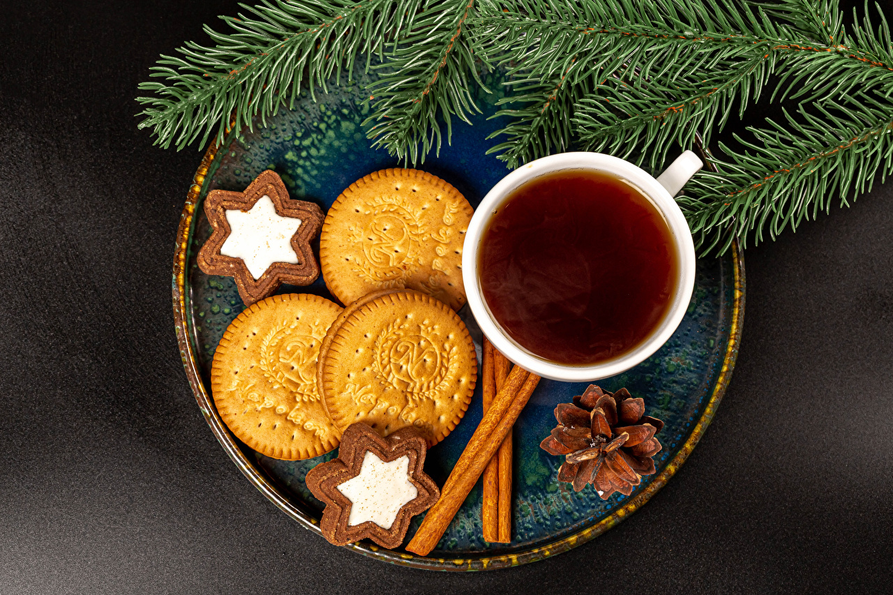 Images Christmas Tea Cinnamon Cup Food Cookies Branches Pine cone Gray background New year Conifer cone
