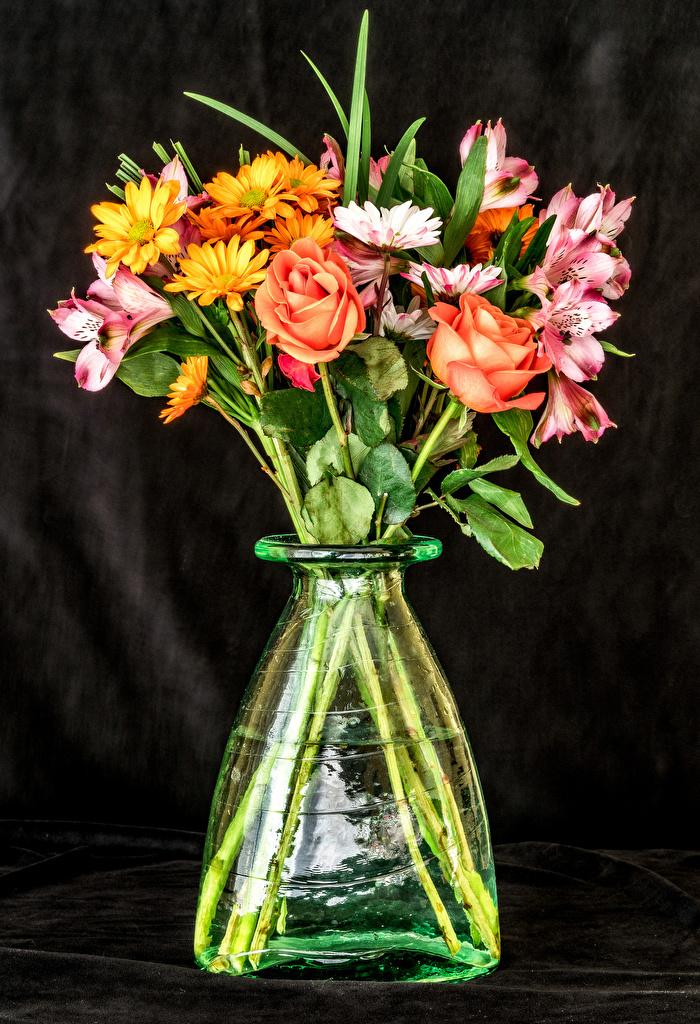 Photo rose Flowers Alstroemeria Chrysanthemums Vase  for Mobile phone Roses Mums flower Chrysanths