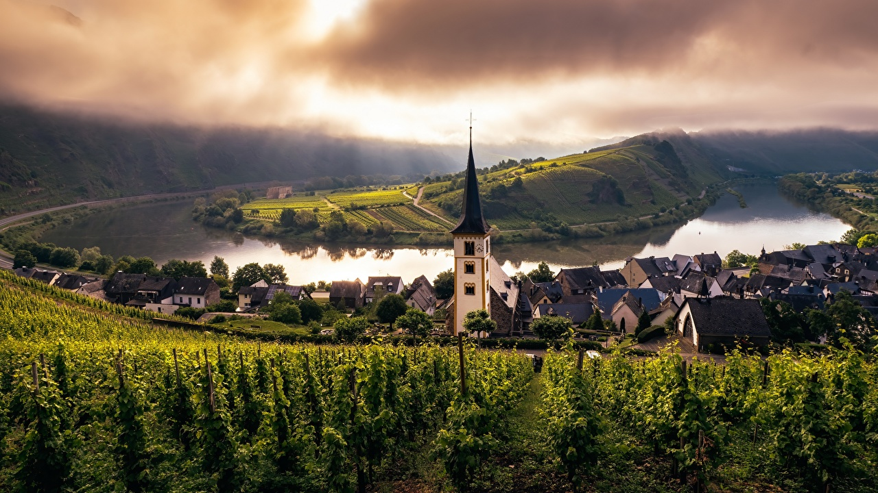 Pictures Church Germany Trier, Mosel, Rheinland-Pfalz Vineyard Rivers Cities river