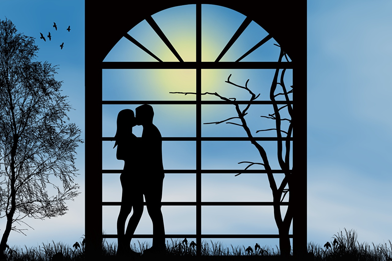Foton Dejtning Par i kärlek silhuetter Kyss Två 2 Kärlek Grenar par på ett datum siluett Silhuett kyssar kysser