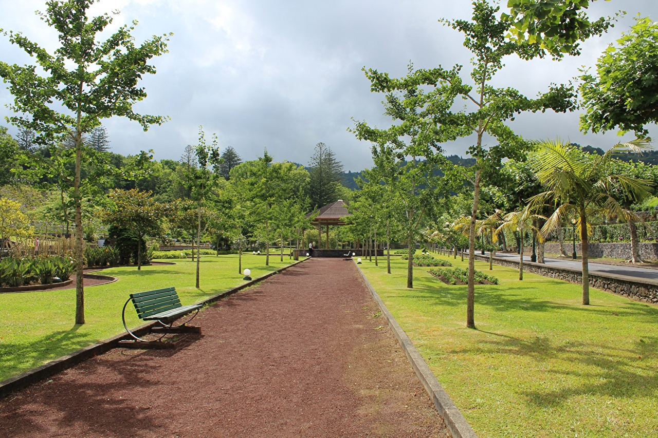 Photos Portugal Azores, Furnas Avenue Parks Bench Trees Cities Allee park