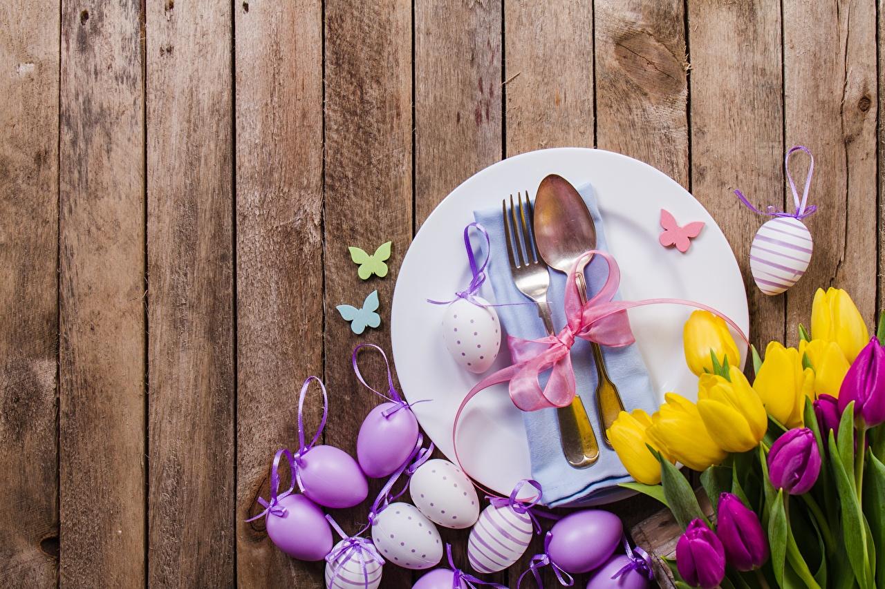 Desktop Wallpapers Easter egg Tulips flower Fork Plate Spoon boards Eggs tulip Flowers Wood planks