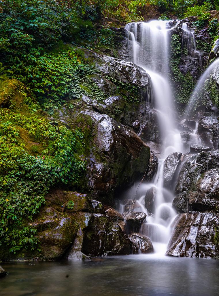 Desktop Hintergrundbilder Natur Felsen Wasserfall Ast Laubmoose  für Handy