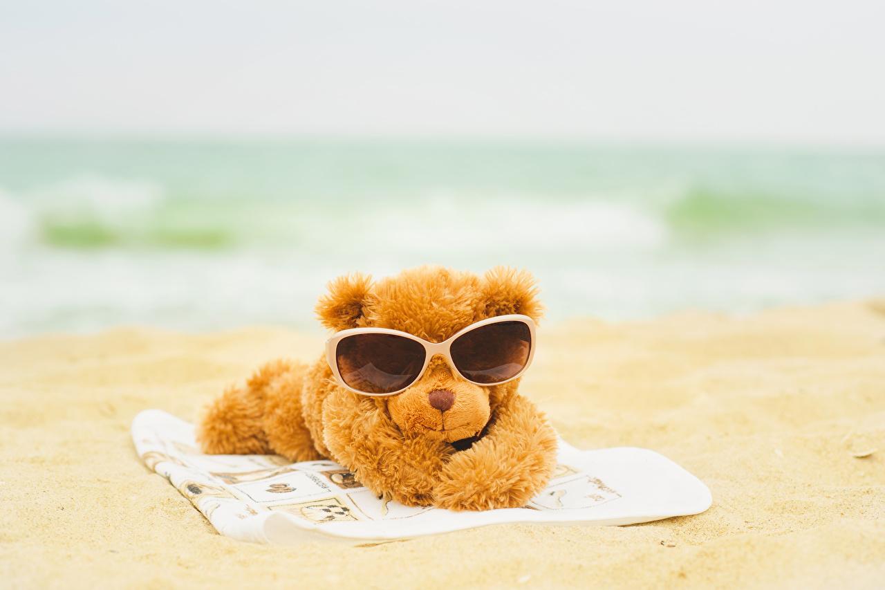 壁紙 テディベア ビーチ 眼鏡 ダウンロード 写真