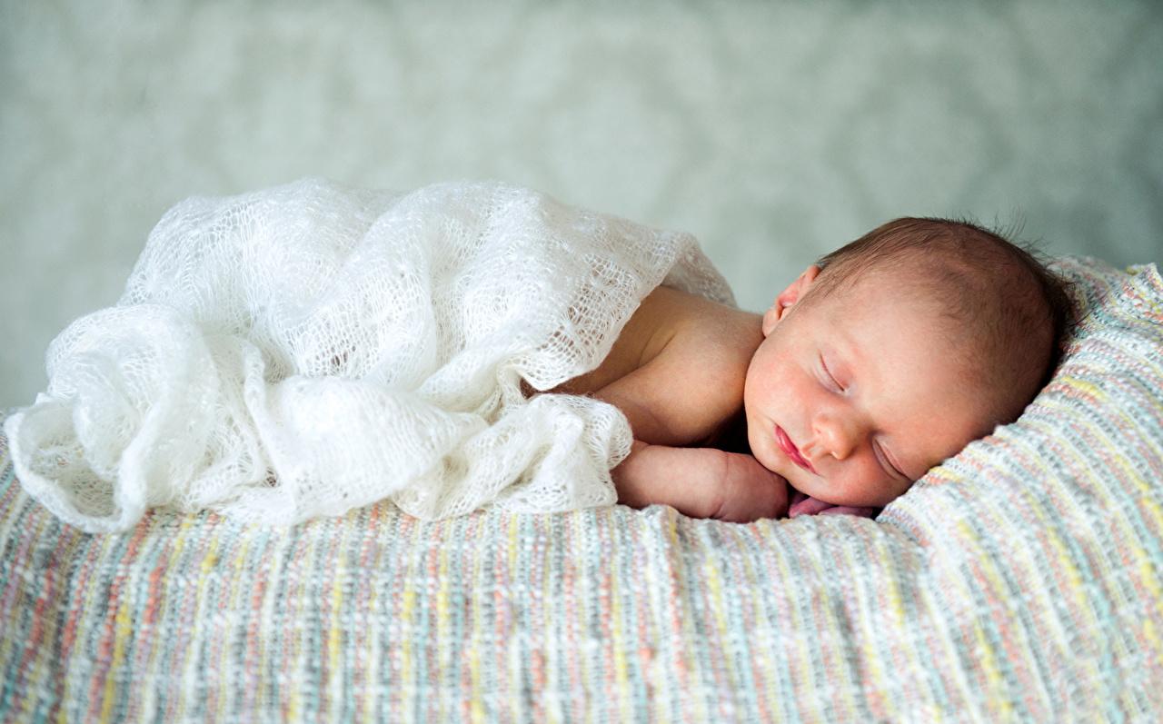 Desktop Wallpapers Infants child Sleep Baby newborn Children sleeping