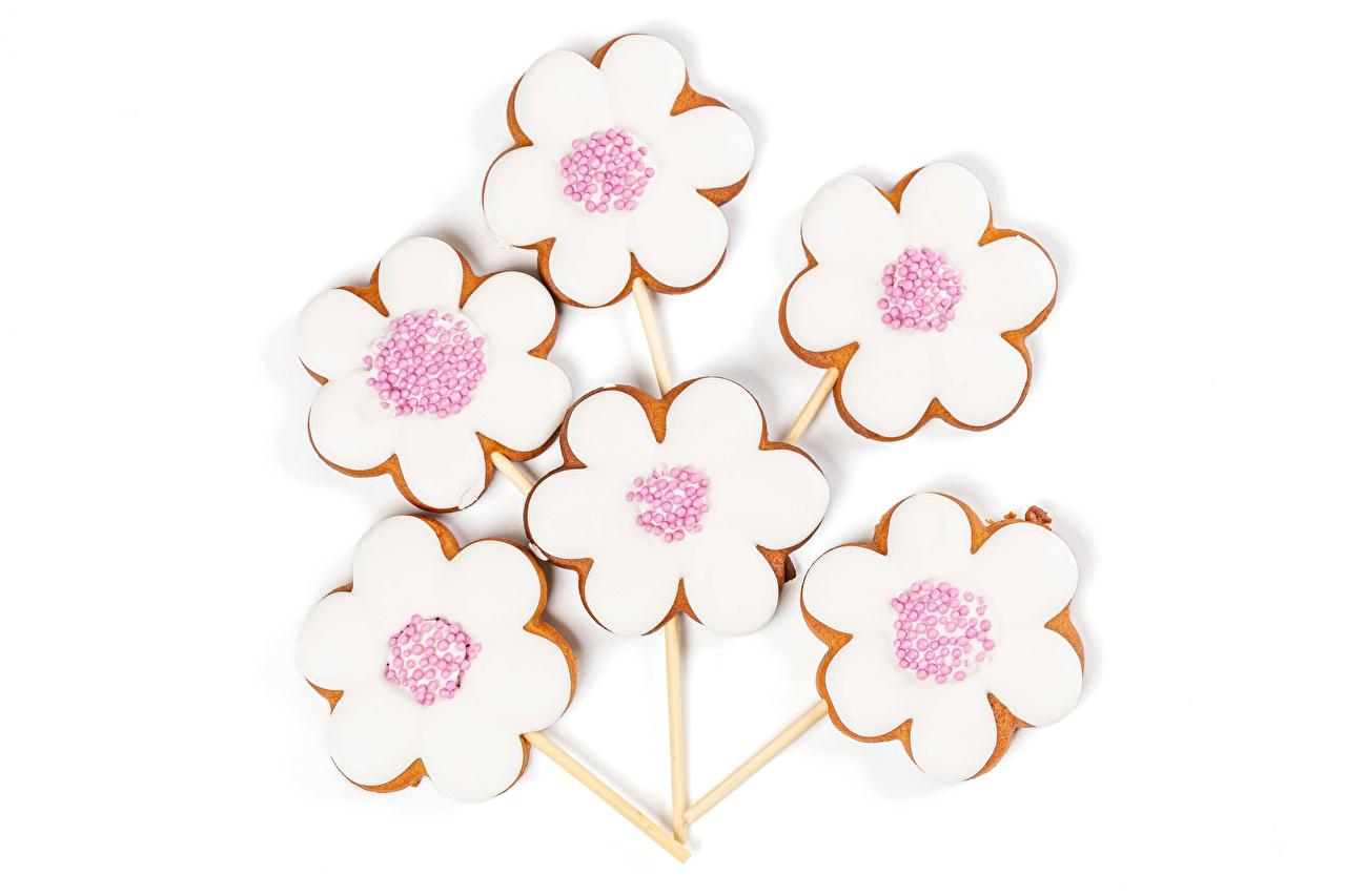 Bakgrunnsbilder til skrivebordet Sukker glasur Kamille Mat Småkaker Hvit bakgrunn Design