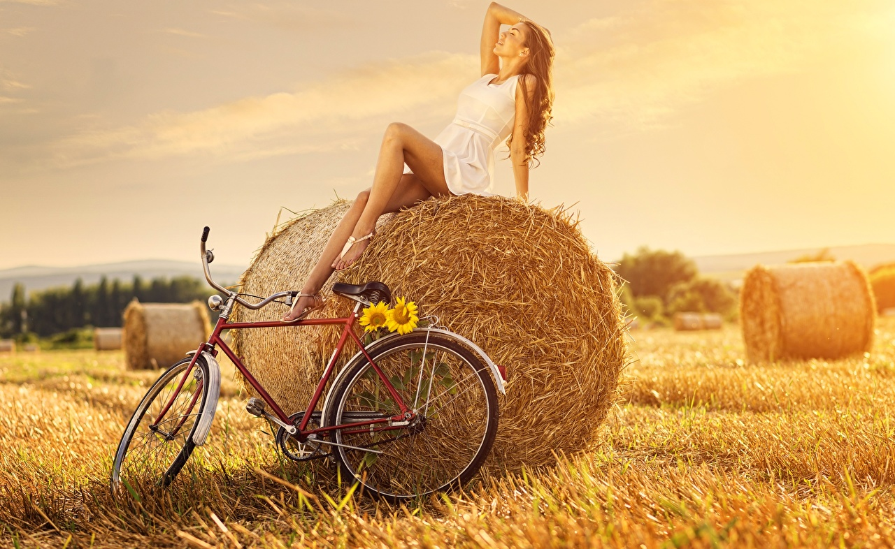 Wallpaper Brown haired posing bicycles female Fields Straw Sitting gown Pose bike Bicycle Girls young woman sit frock Dress