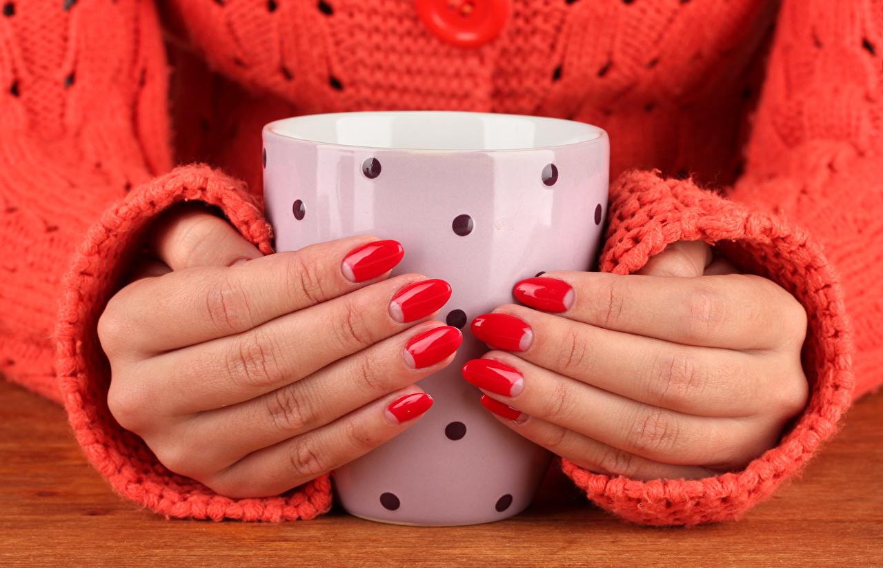 Hintergrundbilder Maniküre Sweatshirt Hand Becher Finger