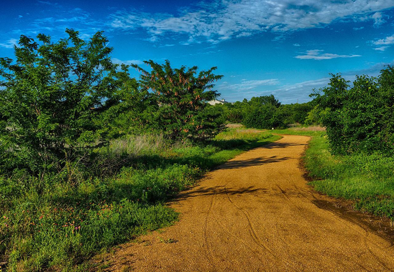 Fotos von Texas USA Natur Wege Himmel Vereinigte Staaten Straße