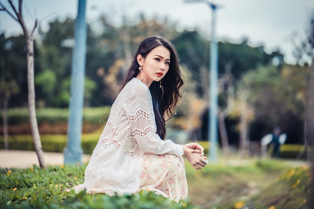 Bilder unscharfer Hintergrund junge frau asiatisches Sitzend Blick Bokeh Mädchens junge Frauen Asiaten Asiatische sitzt sitzen Starren