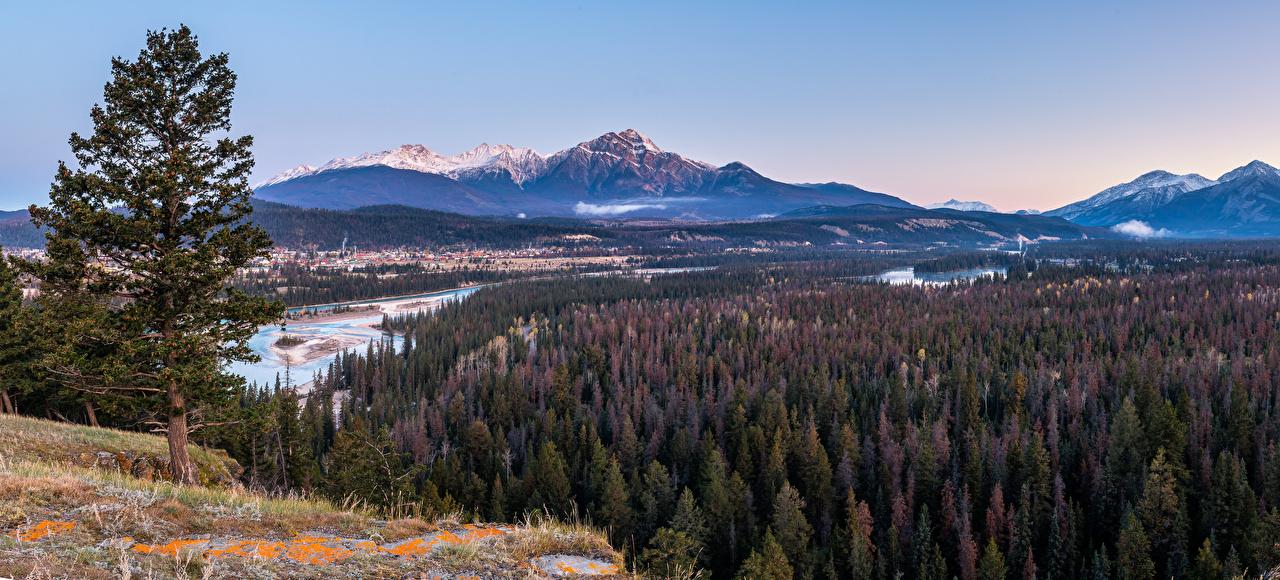 Фотография Природа Панорама Канада Alberta Горы Джаспер парк лес парк Пейзаж речка панорамная гора Леса Парки Реки река