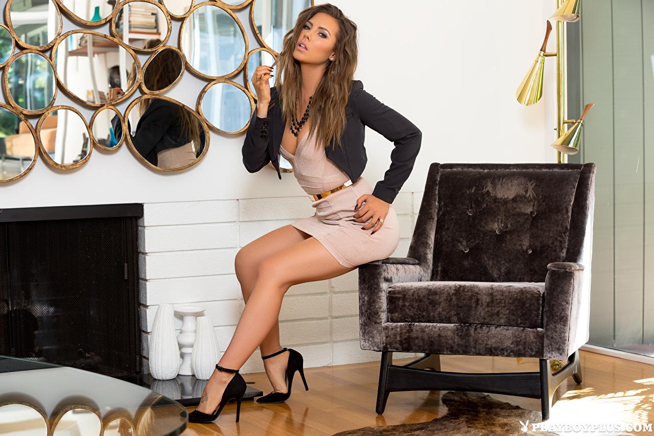 Immagini Gia Ramey-Gay Ragazza capelli castani bellissimi Ragazze Le gambe seduta Playboy Poltrona Colpo d'occhio Vestito bel bello Bella ragazza giovani donne giovane donna sedute Seduto Sguardo Abito